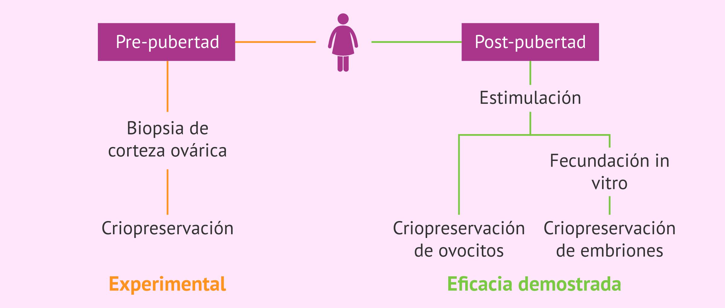 Opciones de preservación de la fertilidad en pacientes oncológicas