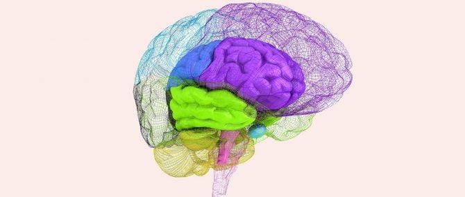 Plagiocefalia y desarrollo neurológico