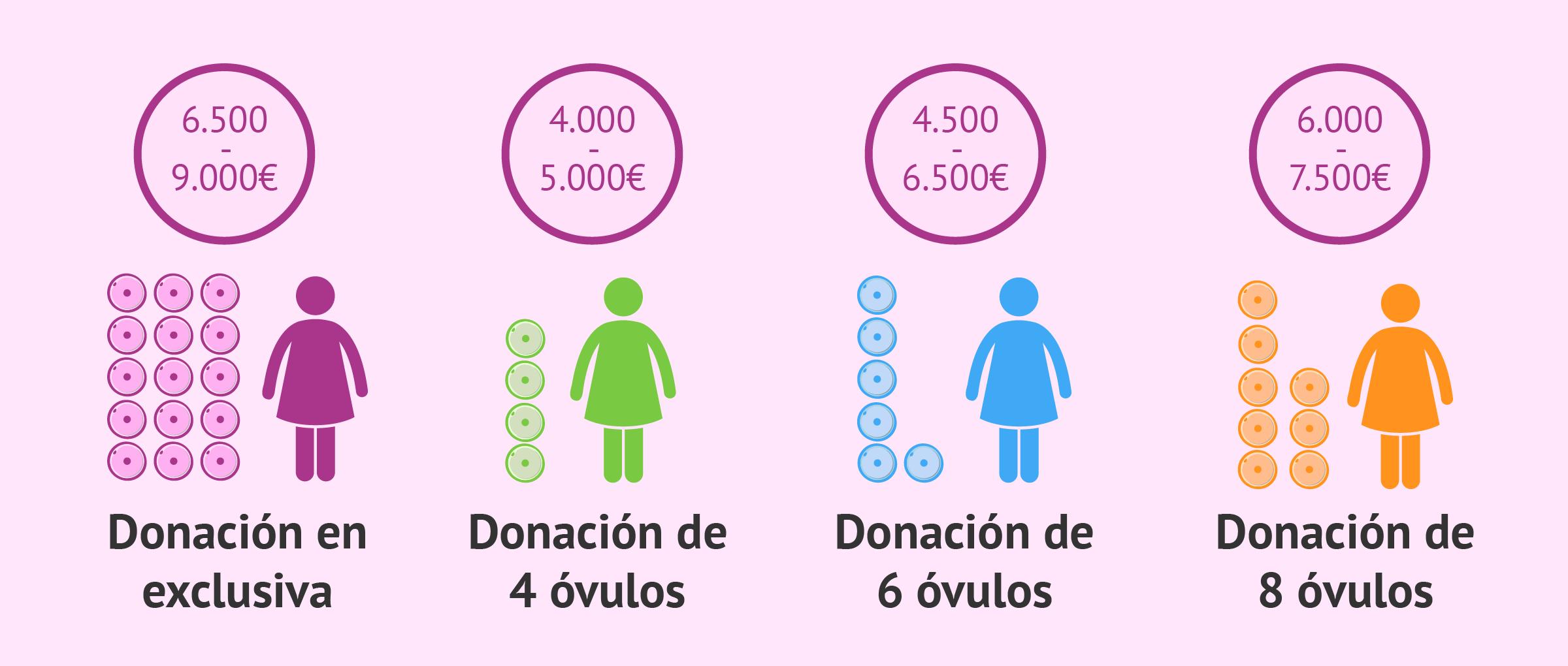 Precio de los tratamientos de FIV con donación de óvulos