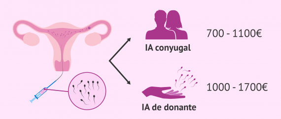 Imagen: Coste de la inseminación artificial