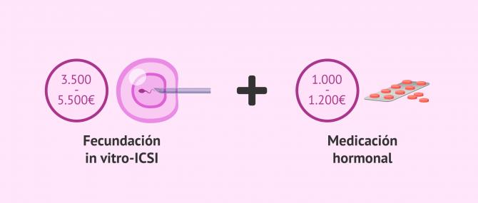 Imagen: ¿Cuánto vale la ICSI?