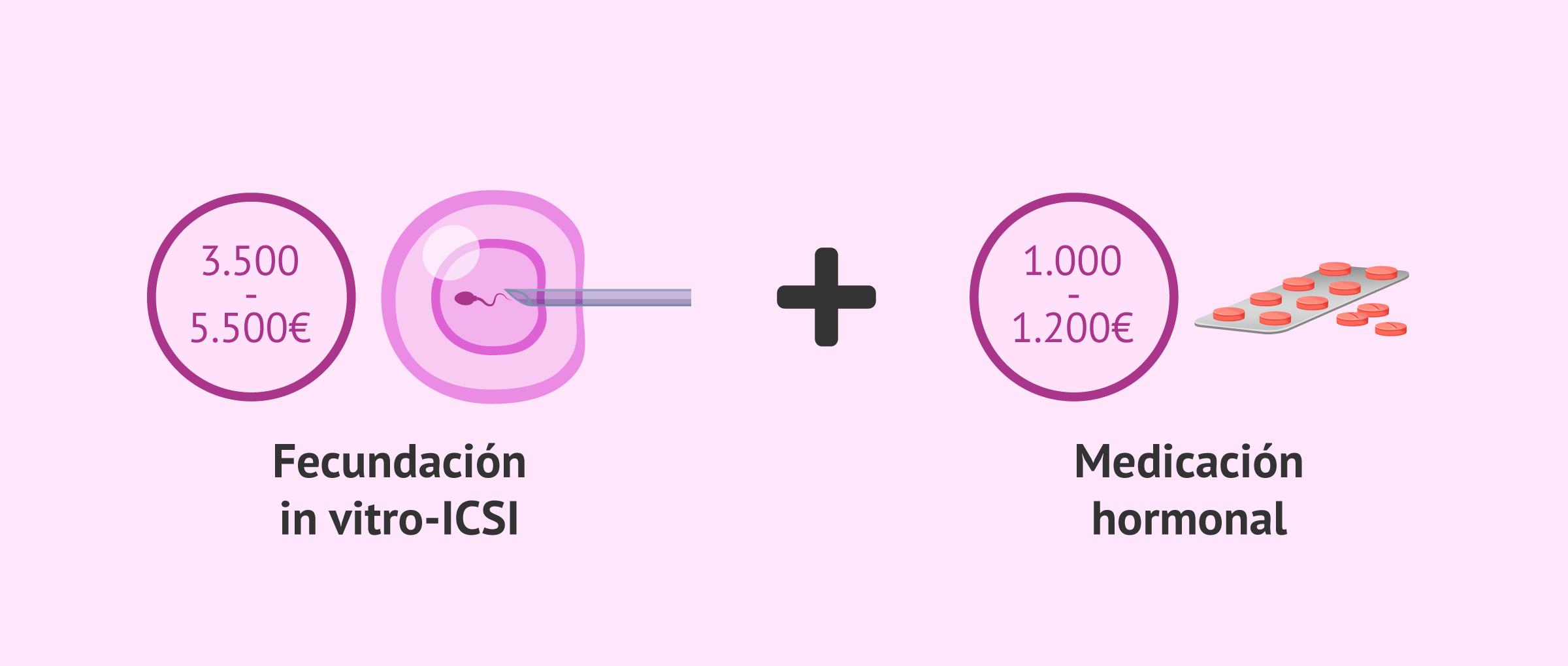 ¿Cuánto vale la ICSI?