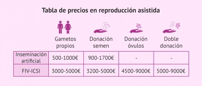 Imagen: ¿Cuánto cuesta un tratamiento de reproducción asistida?