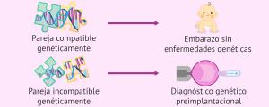 Evitar la transmisión de enfermedades genéticas