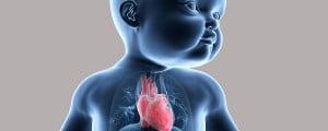 Tabaco y sobrepeso afectan al corazón del bebé