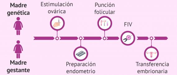 Recepción de óvulos u ovocitos de la pareja