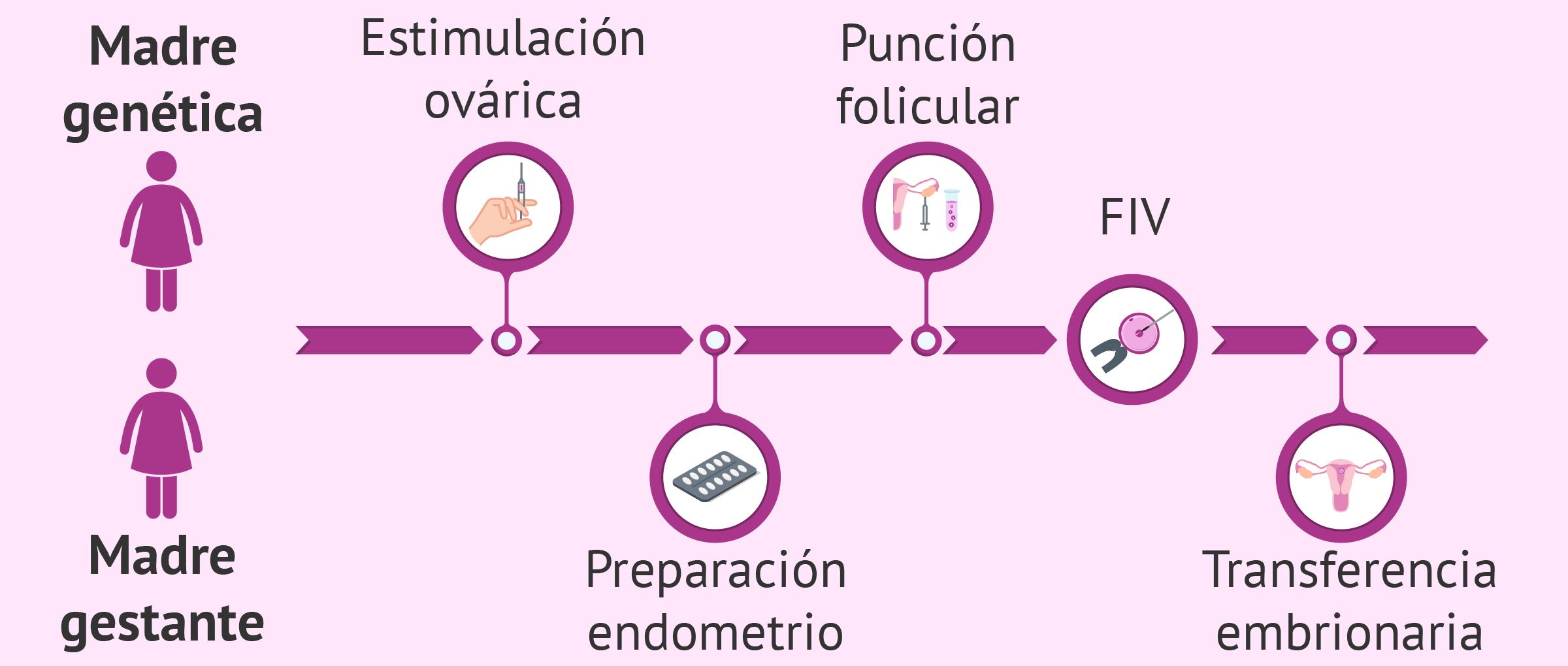 ¿Qué es el método ROPA? - FIV con recepción de óvulos de la pareja