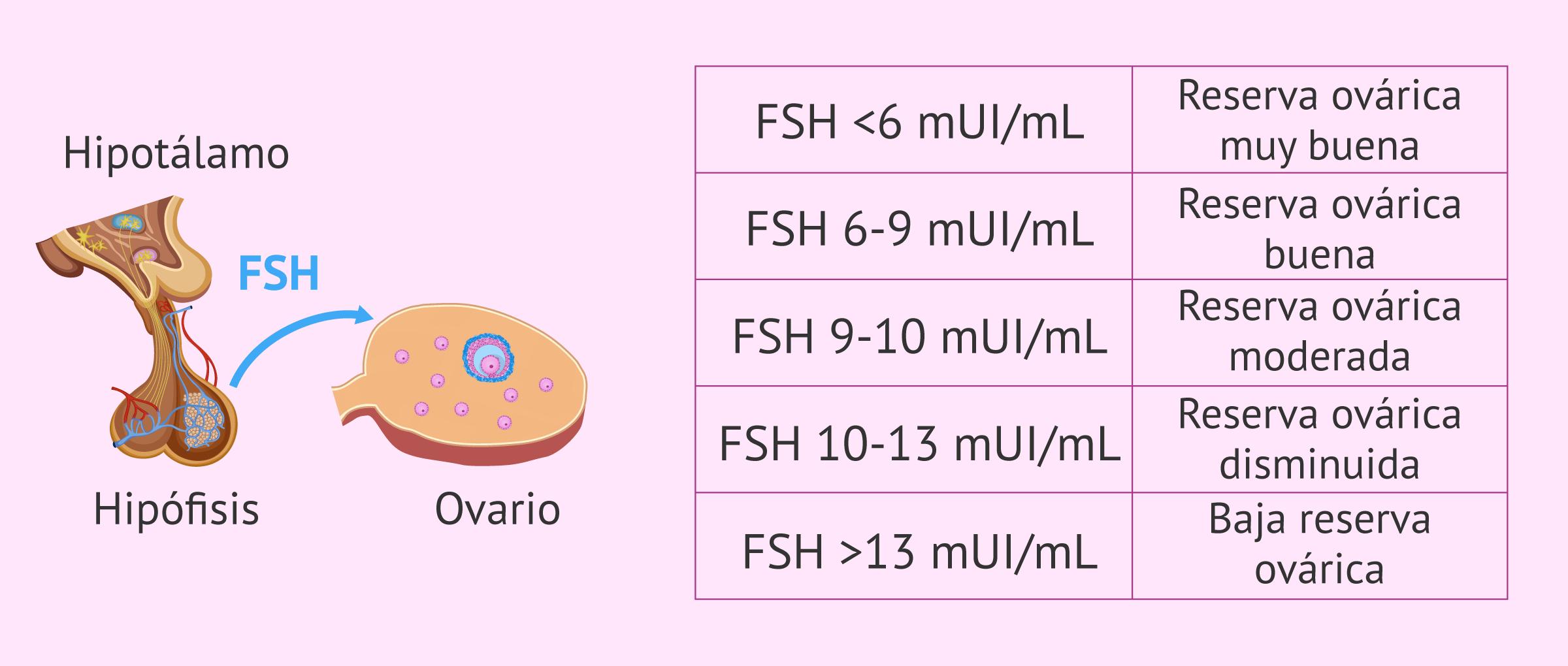 Relación entre la FSH y la reserva ovárica