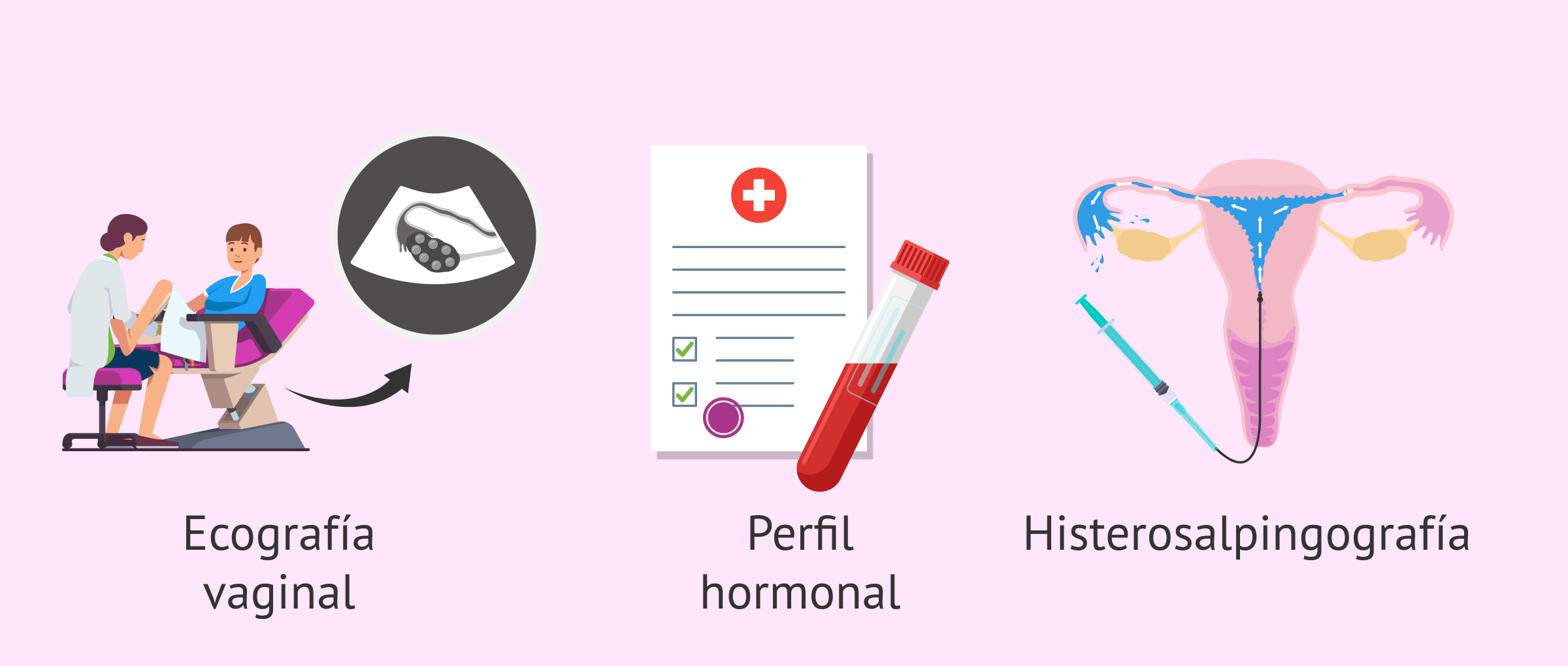 Primera pruebas de fertilidad en la mujer