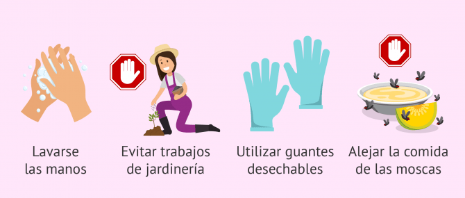 Imagen: Medidas higiénicas contra la toxoplasmosis