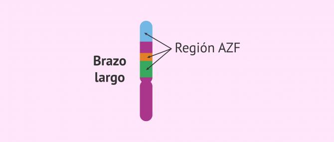 Imagen: region-azf