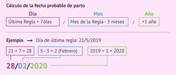 Imagen: Regla de Naegele