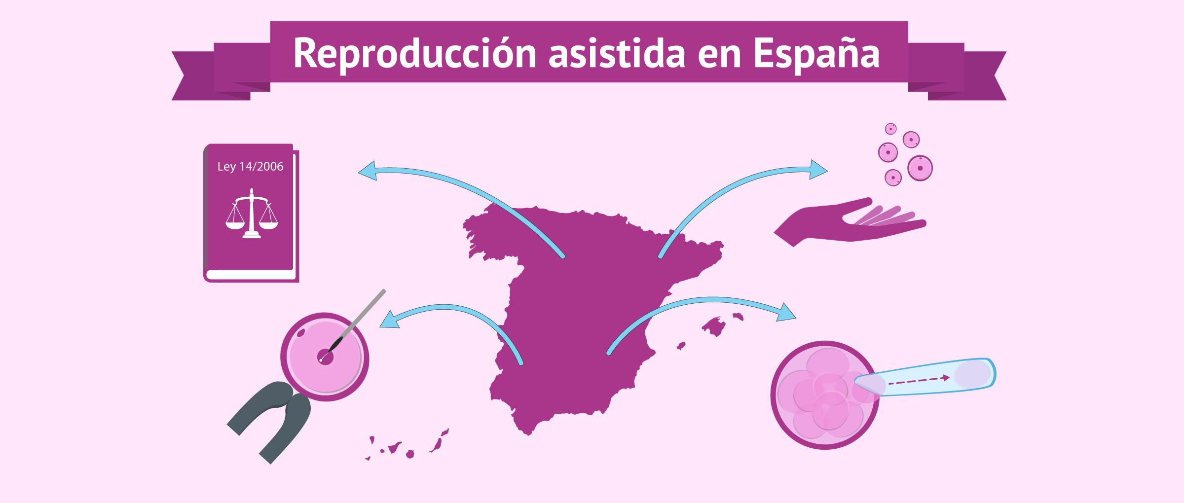 La reproducción asistida en España