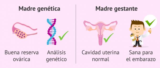 Imagen: Características médicas para método ROPA