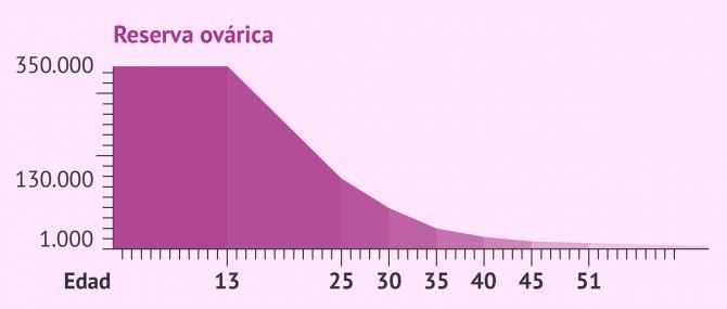 Imagen: Evolución de la reserva ovárica con la edad
