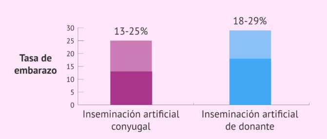 Imagen: Probabilidad de embarazo de la IA