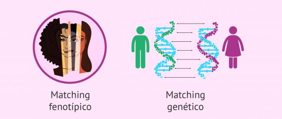 Imagen: Matching fenotípico y genético de los donantes de gametos