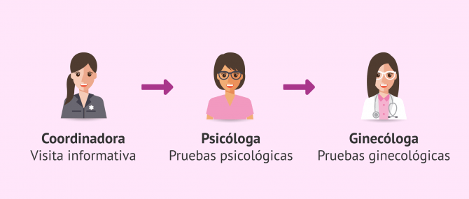 Imagen: Donar ovocitos