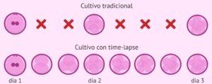 Elección del mejor embrión
