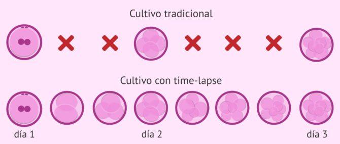 ¿Qué es el time-lapse? – Mejora del desarrollo embrionario in vitro