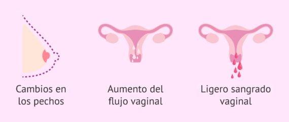 Primeros síntomas del embarazo