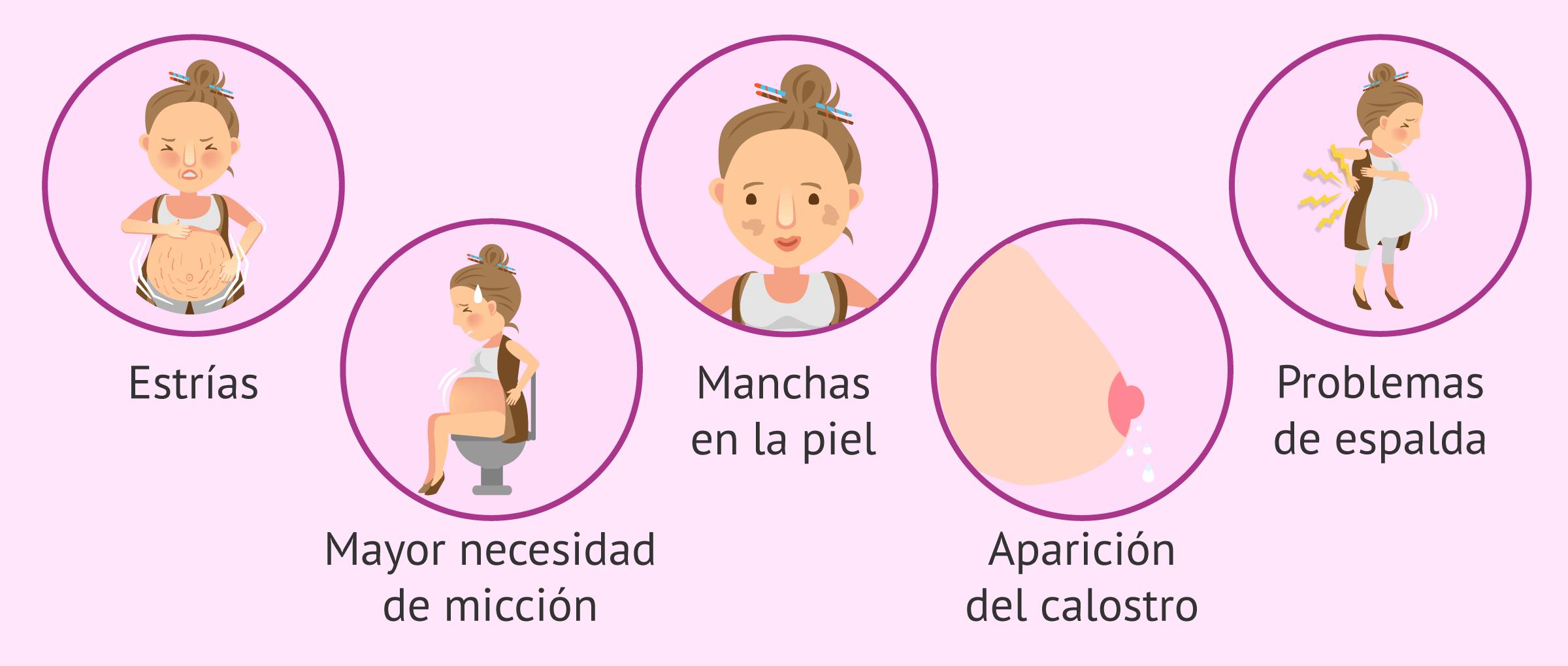 Síntomas en la embarazada a los 6 meses de gestación