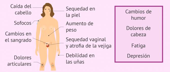 Menopausia en la mujer: cuándo se produce y qué síntomas tiene