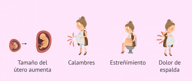 Imagen: Síntomas en la madre en la semana 16 de embarazo