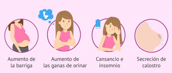 Imagen: Síntomas en el segundo y tercer trimestre de embarazo