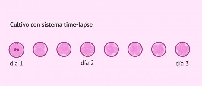 Imagen: Selección embrionaria con time-lapse