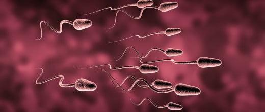 Tratamiento para hombres estériles