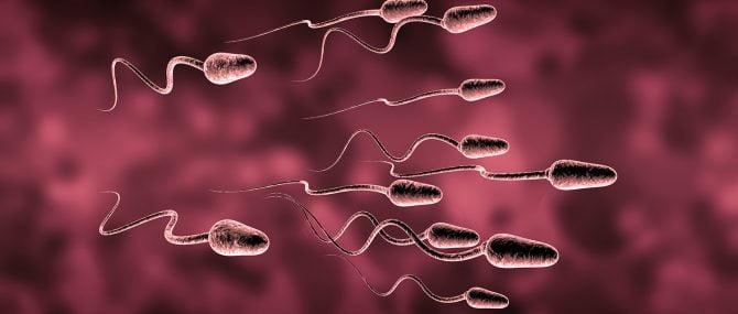 Imagen: Tratamiento para hombres estériles