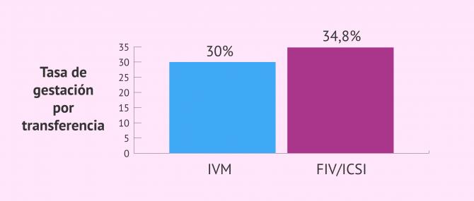 Imagen: Tasa de gestación por transferencia IVM vs FIV/ICSI