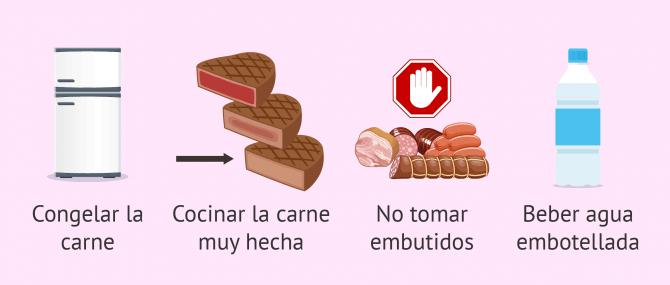 Imagen: Parásito toxoplasma