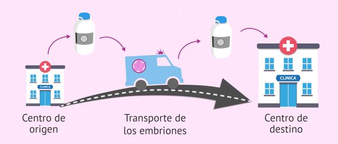 Transporte de embriones, óvulos y semen congelados a otro centro