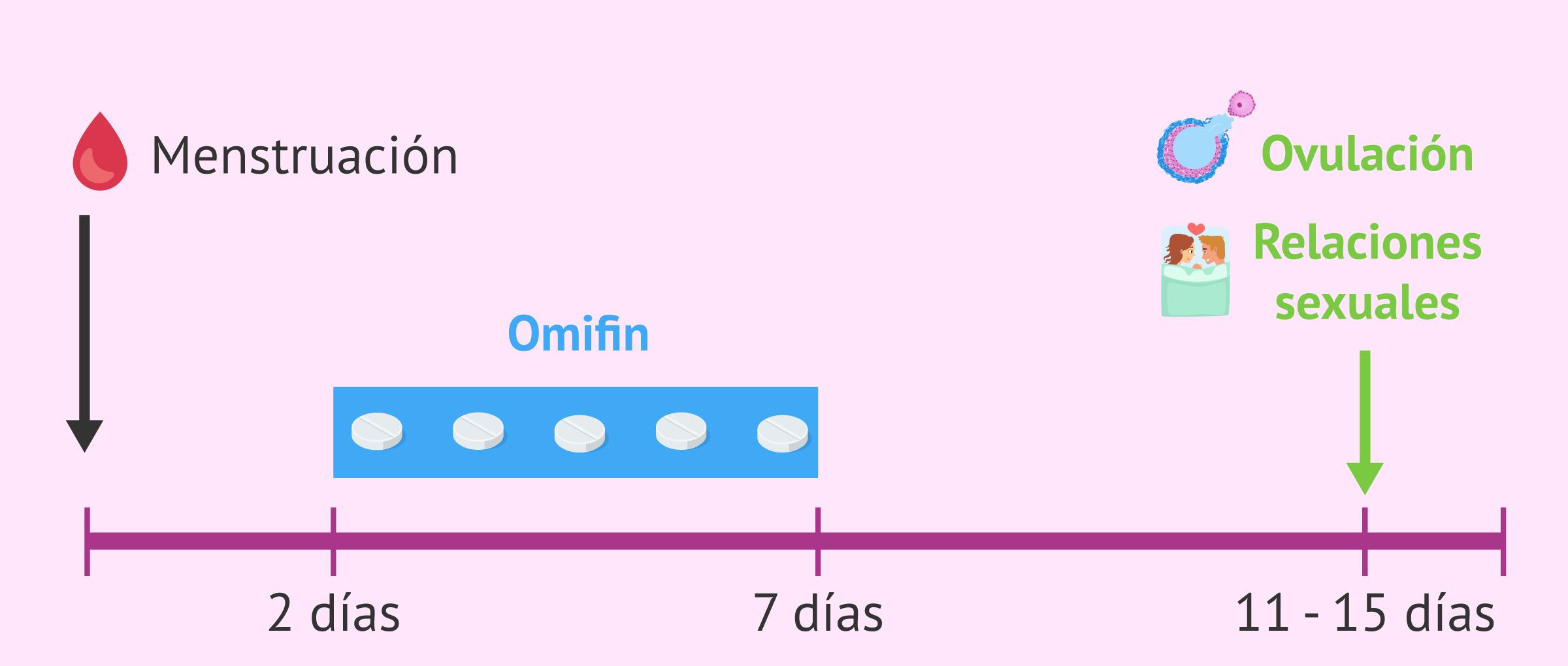 Relaciones sexuales programadas con Omifin
