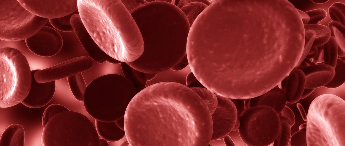 Trombosis y flujo sanguíneo en embarazadas