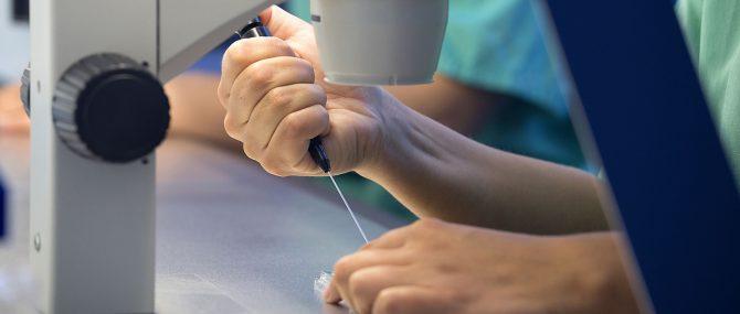 Unidad Phi Fertility Center manipulacion de gametos