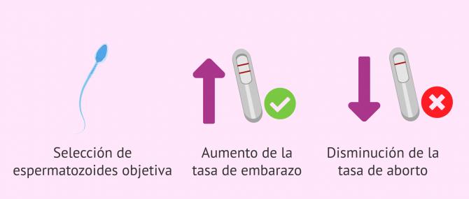 Imagen: Ventajas del PICSI